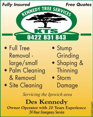 Fully Insured    Full Tree Removal - Large/Small  Shaping & Thinning  Palm Cleaning & Removal  Storm Damage  Stump Grinding  Site Clearing   Servicing the Ipswich Area DES KENNEDY - OWNER OPERATOR WITH OVER 20 YEARS EXPERIENCE 24 HOUR EMERGENCY SERVICE