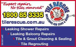 """Expert repairs, No tiles removed"" 