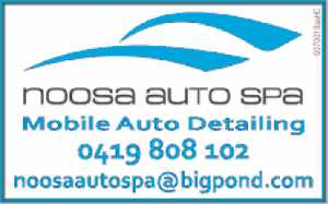 Mobile Auto Car Detailing 