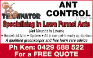 Specialising in Lawn Funnel Ants 