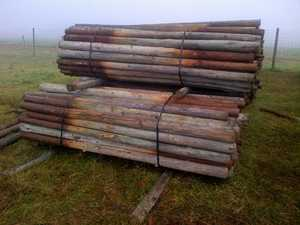 Treated Pine 2.7m x 120mm. Treated against rot & insects. $6 each, Used, Good Condition, Lismore 0266880209