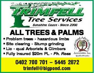 ALL TREES & PALMS 