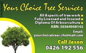 All Aspects of tree work  Fully Licensed and Insured  Diploma Of Arbourculture  ABN: 30364048142   Email: yourchoicetrees@hotmail.com   Call Jason 0426 192 556
