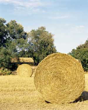 4x4 round bales.