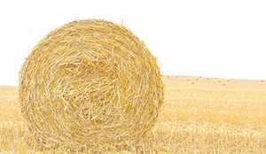 8x4x3 high density bales