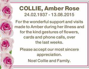 COLLIE, Amber Rose