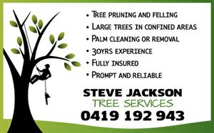 Tree Puning and Felling  Large Trees in confined areas  Palm cleaning or removal  Prompt and reliable   Trust 30yrs experience   Fully insured   Noosa local