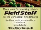 Macadamia farm seeking reliable Field Staff For the Bundaberg - Childers area Must have tractor and general farm experience Immediate start Please forward resume to maccajobs@hotmail.com or PO Box 1678, Bundaberg 4670