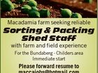 Macadamia farm seeking reliable Sorting & Packing Shed Staff with farm and field experience For the Bundaberg - Childers area Immediate start Please forward resume to maccajobs@hotmail.com or PO Box 1678, Bundaberg 4670