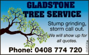 Stump grinding  storm call out  Will show up for all quotes.