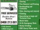 Central Tree Services Sunshine Coast