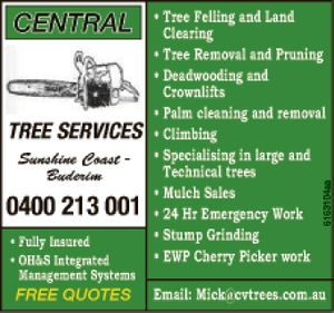 Sunshine Coast - Buderim