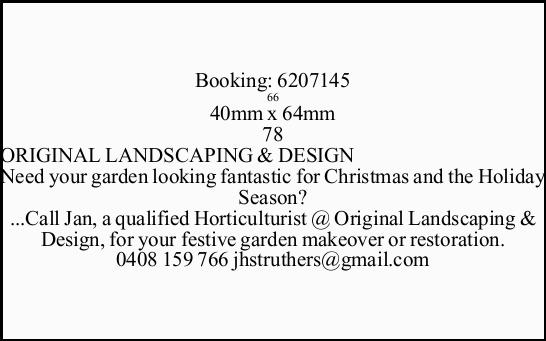 Need your garden looking fantastic for Christmas and the Holiday Season?