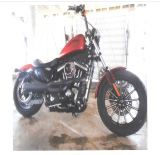 HARLEY customised, Iron Sportster 2013