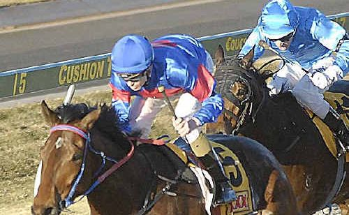 Voice Commander and Tye Angland race to victory in last year's Weetwood Handicap (1300m) at Clifford Park.