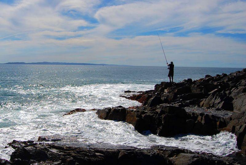 Top sunshine coast fishing spots finda for Best fishing spots