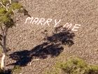 Mystery proposal appears