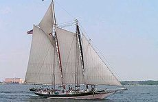 Lady Maryland, a replica 19th-century pungy schooner based out of Balitmore, USA.