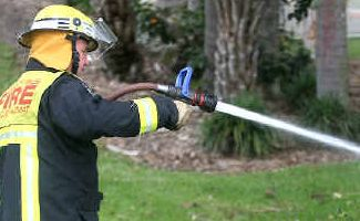 Firefighters were called to a grass fire.