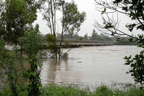 Water was nearly lapping the bottom of the Les Baker Bridge at Gayndah yesterday morning and was still rising.