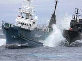 THE forced departure of two thirds of the Sea Shepherd fleet from the Southern Ocean has dealt a blow to the 2012 anti-whaling campaign.