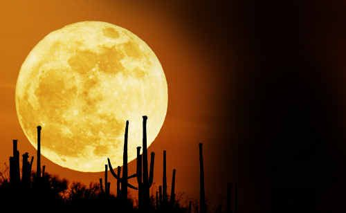 Keep an eye out for the 'Supermoon' this weekend - the largest moon seen in 18 years.