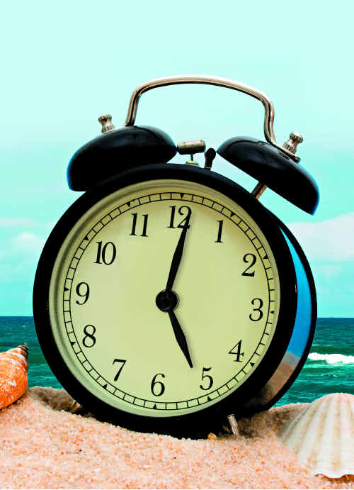 Daylight Saving for South East Queensland Party has made a formal submission to cross-border commissioner Steve Toms about daylight saving.