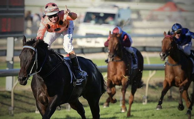 Black Caviar installed as favourite for Royal Ascot race in June.