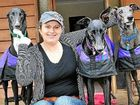 On a mission to help greyhounds
