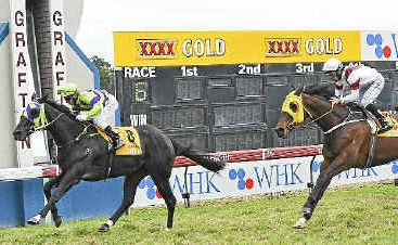 Paul Hammersley rides Warrior Within past the post to win the 2011 Wykes Tyrepower Grafton Cup. Photo: JoJo Newby/The Daily Examiner