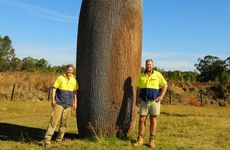 Australia Zoo's head of construction Mark Niven and resident artist Cameron Chapman.