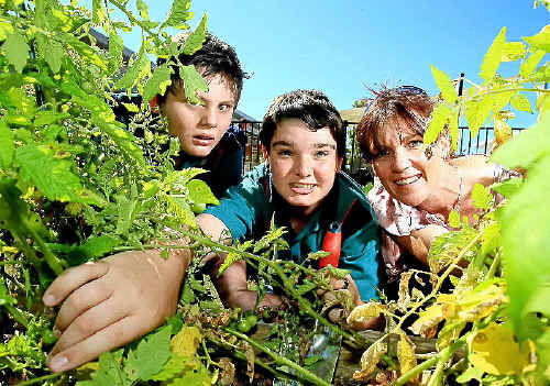GREEN COMMUNITY: Luke Miller, Corey Heron and Janelle Staggard get their hands dirty.