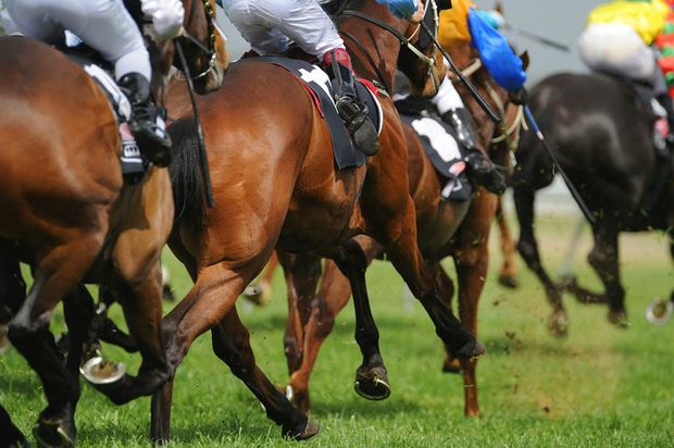 A horse owner is being investigated by Racing QLD over an alleged incident that occurred yesterday at Callaghan Park Racecourse in Rockhampton