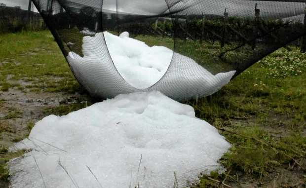 Destructive hail bucketed down at the vineyard Robert Channon Wines on Wednesday night.