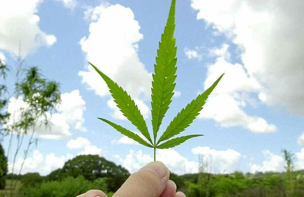 """Tweed Heads was never known as """"Weed Heads"""" despite a Wikipedia article's claims."""