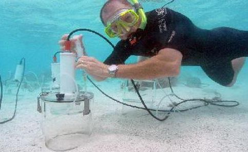 Professor Bradley Eyre collects samples from benthic chambers on Heron Island as part of an ARC Discovery funded project on ocean acidification.