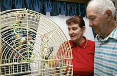 Rick and Colleen Kraudelt of Kinka Beach pay attention to their birds after a close encounter of the slithery kind.
