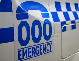 Car hits cow on Rockhampton-Yeppon Rd, two taken to hospital