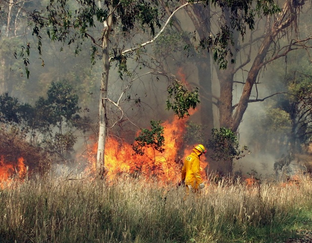 National Parks and Wildlife, the Rural Fire Service and property owners are conducting hazard reduction burns this week.