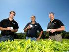 Madura has eyes on US tea market