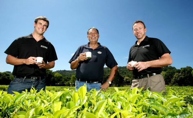 James Bright, Michael Sales and Barry Cosier at Madura Tea Estates.