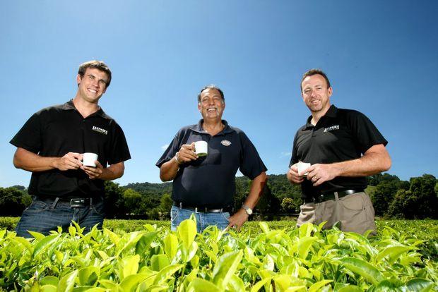 James Bright, Michael Sales and Barry Cosier at Madura Tea Estates.