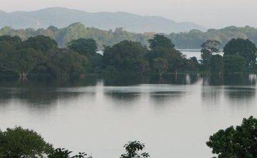 Sri Lanka's tranquil Kandalama Lake as seen from the Heritance Kandalama hotel.