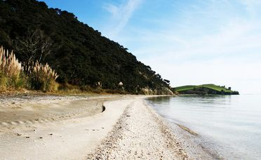 Waipiro Bay/Te Rau Puriri in the South Kaipara Peninsula is as remote as you can get.