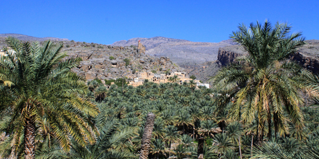 The Omani village of Misfat Al Abriyyin, blessed by cool, crisp, mountain water, lives up to its reputation as paradise.