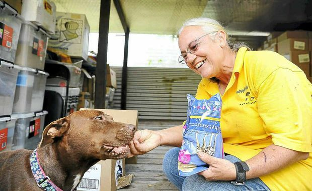 Sally Rogers of Happy Paws Haven gives Lizzy a bite of the pet food donated by P&G; Pet Foods.