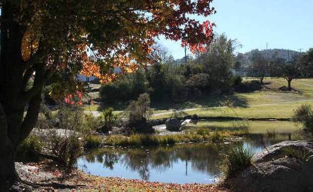 Another beautiful winter's day on the Granite Belt, what could be better?