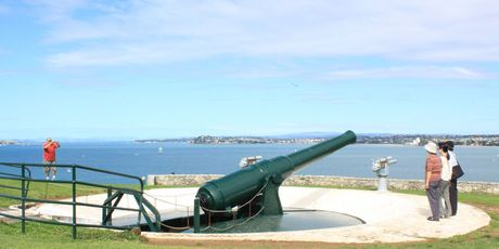 North Head's disappearing gun could be in for a makeover.