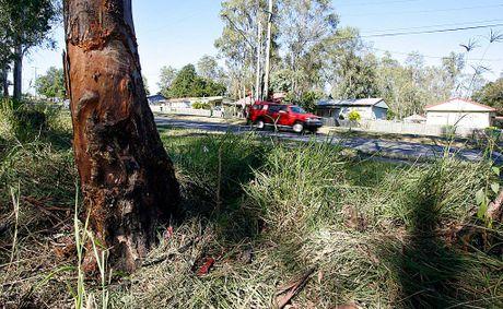 The scene of the crash on Kruger Parade at Redbank Plains.