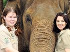 Animal crusader rallies for zoo